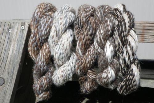 Designer Yarn